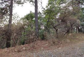 Foto de terreno habitacional en venta en  , del bosque, cuernavaca, morelos, 19361741 No. 01