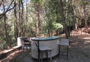 Foto de terreno habitacional en venta en  , del bosque, cuernavaca, morelos, 9224188 No. 01
