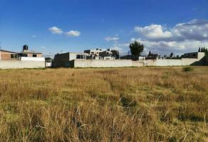 Foto de terreno habitacional en venta en  , del calvario, zinacantepec, méxico, 0 No. 01