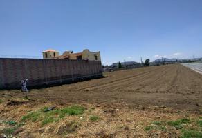 Foto de terreno habitacional en venta en del carmen 1, santa isabel chalma, amecameca, méxico, 11110436 No. 01