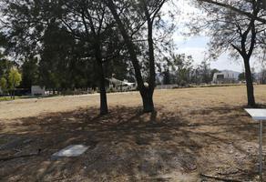 Foto de terreno habitacional en venta en  , del carmen, aguascalientes, aguascalientes, 0 No. 01