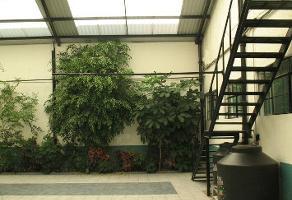 Foto de oficina en renta en  , del carmen, coyoacán, df / cdmx, 0 No. 01