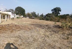 Foto de terreno habitacional en venta en del carmen , la raya, zimatlán de álvarez, oaxaca, 0 No. 01
