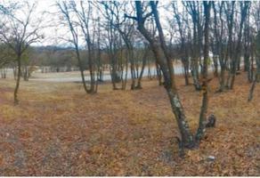 Foto de terreno habitacional en venta en del lago 0, campestre del bosque, puebla, puebla, 0 No. 01