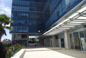 Foto de oficina en renta en  , del lago, cuernavaca, morelos, 12040039 No. 01