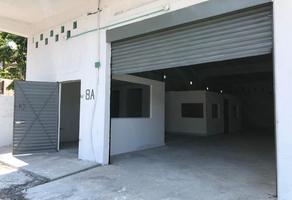 Foto de nave industrial en renta en  , del maestro, veracruz, veracruz de ignacio de la llave, 11102361 No. 01
