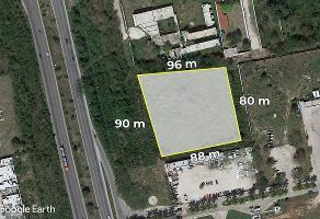 Foto de terreno habitacional en renta en  , del norte, mérida, yucatán, 12285090 No. 01