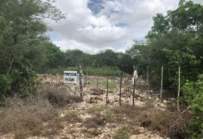 Foto de terreno habitacional en venta en  , del norte, mérida, yucatán, 15097898 No. 01