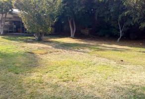 Foto de terreno habitacional en venta en  , delicias, cuernavaca, morelos, 10613864 No. 01