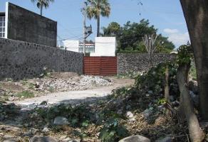 Foto de terreno habitacional en venta en  , jardines de delicias, cuernavaca, morelos, 11295474 No. 01