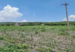 Foto de terreno habitacional en venta en  , delta, la piedad, michoacán de ocampo, 18418912 No. 01