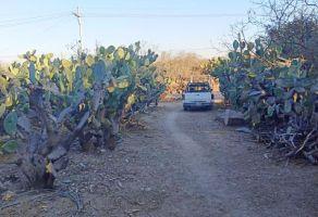 Foto de terreno habitacional en venta en Lomas de San José, San Miguel de Allende, Guanajuato, 20132217,  no 01