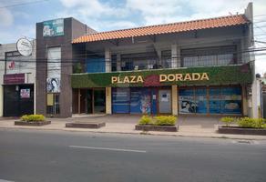 Foto de oficina en renta en diaz ordaz , las reynas, irapuato, guanajuato, 15290771 No. 01