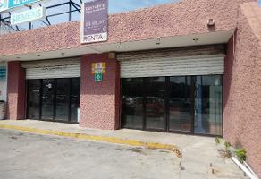Foto de local en renta en  , diaz ordaz, mérida, yucatán, 12117401 No. 01