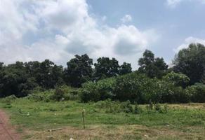 Foto de terreno habitacional en venta en  , diego ruiz, yautepec, morelos, 13918987 No. 01