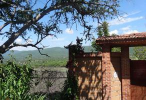 Foto de terreno habitacional en venta en  , diego ruiz, yautepec, morelos, 14475455 No. 01