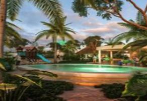 Foto de terreno habitacional en venta en diez. cinco , chicxulub puerto, progreso, yucatán, 0 No. 01