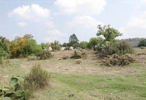 Foto de terreno habitacional en venta en división del norte 71 , zapotlán de juárez centro, zapotlán de juárez, hidalgo, 17477012 No. 02