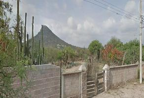 Foto de rancho en venta en doctor jose castillo 100, hidalgo, san luis potosí, san luis potosí, 0 No. 01