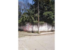 Foto de terreno habitacional en venta en doctor lucio , araucarias, coatepec, veracruz de ignacio de la llave, 0 No. 01