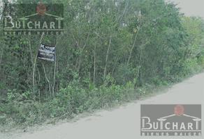 Foto de terreno habitacional en venta en  , doctores ii, benito juárez, quintana roo, 0 No. 01