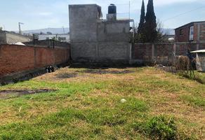 Foto de terreno habitacional en venta en dolores 16 , santa catarina ayotzingo, chalco, méxico, 12756126 No. 01