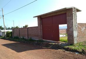 Foto de casa en venta en domicilio conocido 0, chignahuapan, chignahuapan, puebla, 17995997 No. 01