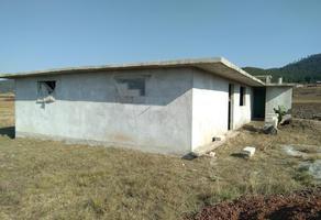 Foto de casa en venta en domicilio conocido 0, loma alta, chignahuapan, puebla, 0 No. 01
