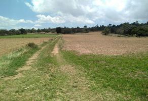 Foto de terreno comercial en venta en domicilio conocido 0, michac, chignahuapan, puebla, 12210756 No. 01