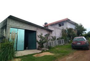 Foto de casa en venta en domicilio conocido 0, toltempan, chignahuapan, puebla, 0 No. 01
