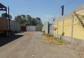 Foto de terreno habitacional en venta en domicilio conocido como predio guadalupe , niños héroes, gómez palacio, durango, 0 No. 01