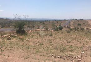 Foto de terreno comercial en venta en domicilio conocido , laguna de san vicente, villa de reyes, san luis potosí, 0 No. 01