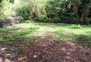 Foto de terreno habitacional en venta en domicilio conocido , palmira tinguindin, cuernavaca, morelos, 3615498 No. 01