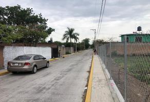 Foto de terreno habitacional en venta en domicilio conocido puente de ixtla , guadalupe victoria, puente de ixtla, morelos, 15324747 No. 01
