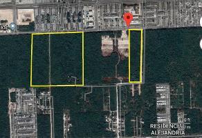 Foto de terreno industrial en venta en domicilio conocido , supermanzana 209, benito juárez, quintana roo, 11201880 No. 01