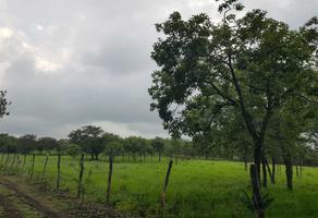 Foto de rancho en venta en domicilio conocido tancoyol , tancoyol, jalpan de serra, querétaro, 8462383 No. 01