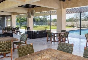 Foto de terreno habitacional en venta en  , dzibilchaltún, mérida, yucatán, 0 No. 01