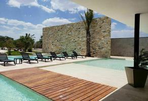 Foto de terreno habitacional en venta en  , dzidzilché, mérida, yucatán, 0 No. 01