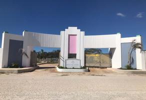 Foto de rancho en venta en  , dzitya, mérida, yucatán, 14010425 No. 01