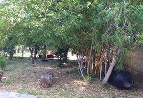 Foto de terreno comercial en venta en  , dzitya, mérida, yucatán, 17871144 No. 01