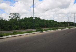 Foto de terreno comercial en venta en  , dzitya, mérida, yucatán, 19189769 No. 01