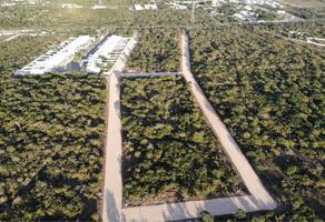 Foto de terreno comercial en venta en - -, dzitya, mérida, yucatán, 0 No. 01