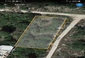 Foto de terreno habitacional en renta en  , dzitya, mérida, yucatán, 0 No. 01