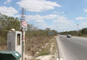 Foto de terreno comercial en venta en  , dzitya, mérida, yucatán, 6857836 No. 01