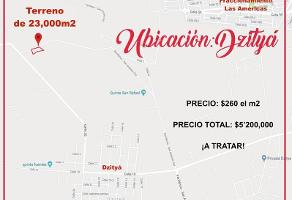 Foto de terreno comercial en venta en  , dzitya, mérida, yucatán, 0 No. 01