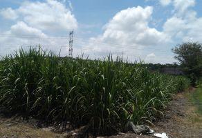 Foto de terreno comercial en venta en San Carlos, Yautepec, Morelos, 15724769,  no 01
