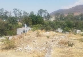 Foto de terreno habitacional en venta en El León, Atlixco, Puebla, 21108052,  no 01