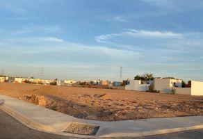 Foto de terreno habitacional en venta en Los Alisos, Cajeme, Sonora, 21515505,  no 01