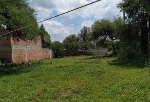 Foto de terreno habitacional en venta en San Juan, Tequisquiapan, Querétaro, 20311052,  no 01