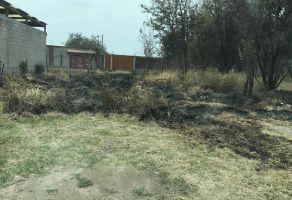 Foto de terreno habitacional en venta en Oacalco, Yautepec, Morelos, 19857002,  no 01